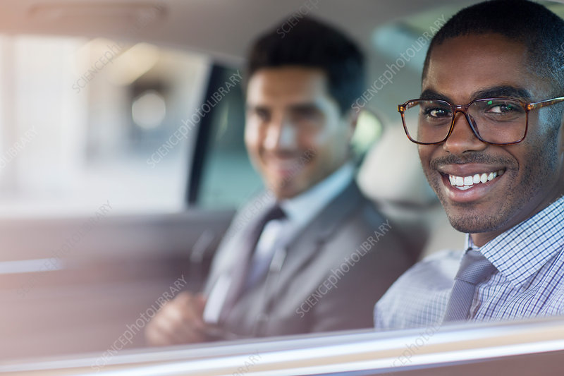 Smiling businessmen sitting in car