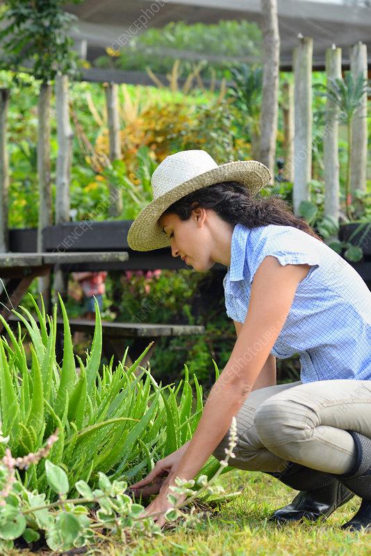 Woman wearing straw hat