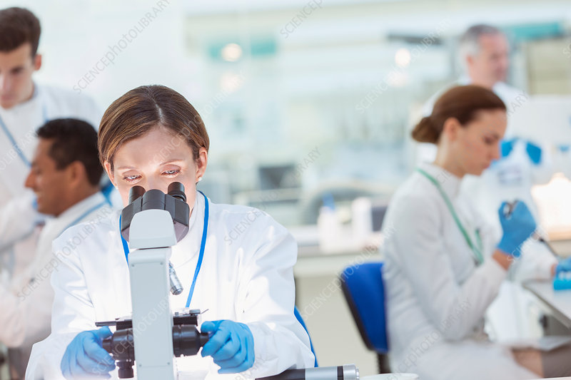 Scientist examining sample