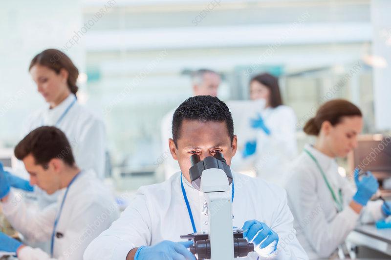Scientist examining sample