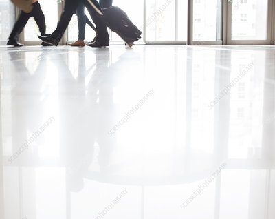 Business people walking with suitcases