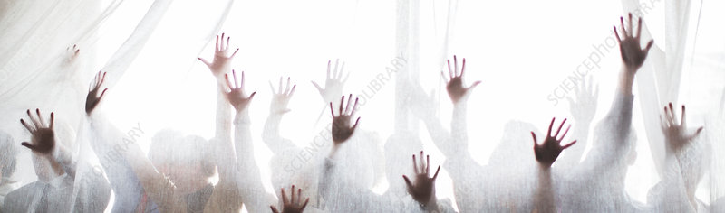 Silhouette of people raising hands