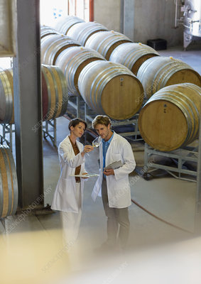 Vintners in lab coats examining wine