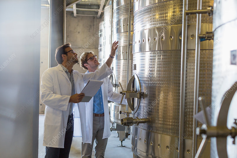 Vintners in lab coats checking vats