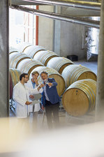 Vintners examining wine in winery cellar