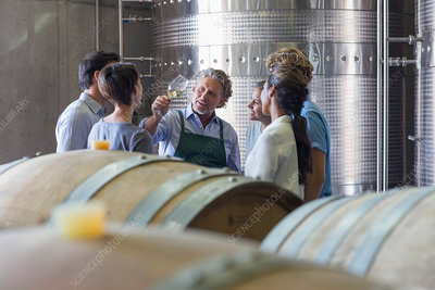 Vintner and winery employees examining wine