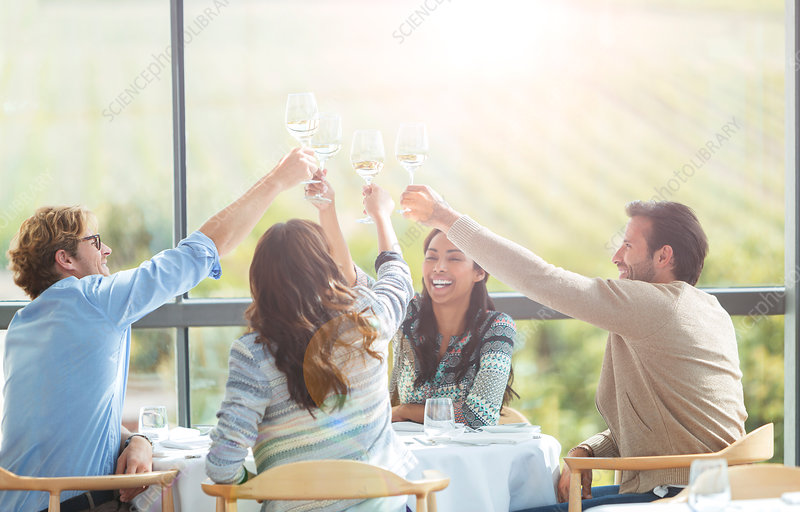 Friends toasting wine glasses overhead at winery dining room