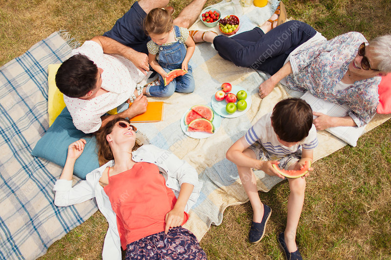Family enjoying summer picnic