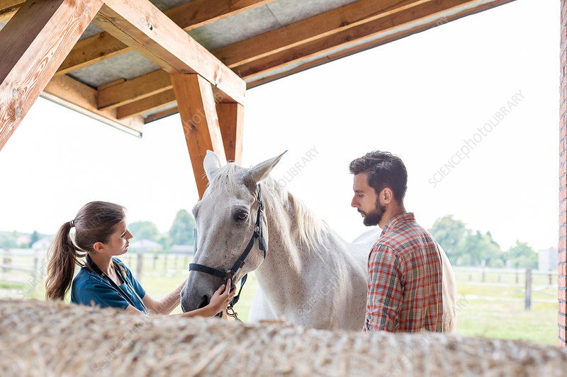 Couple petting horse in rural stable