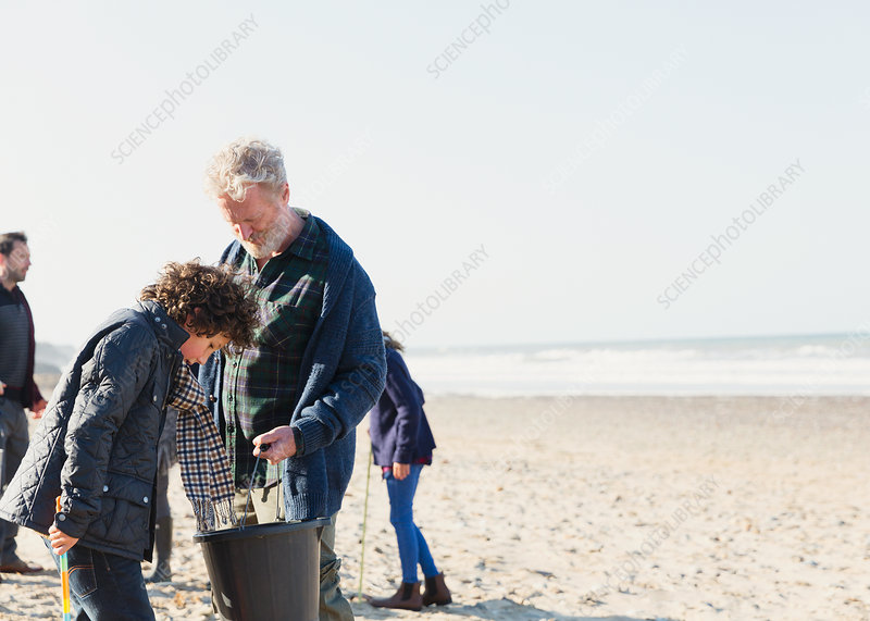 Family clam digging on sunny beach