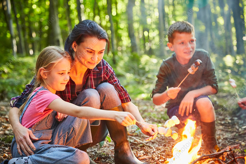 Family roasting marshmallows at campfire