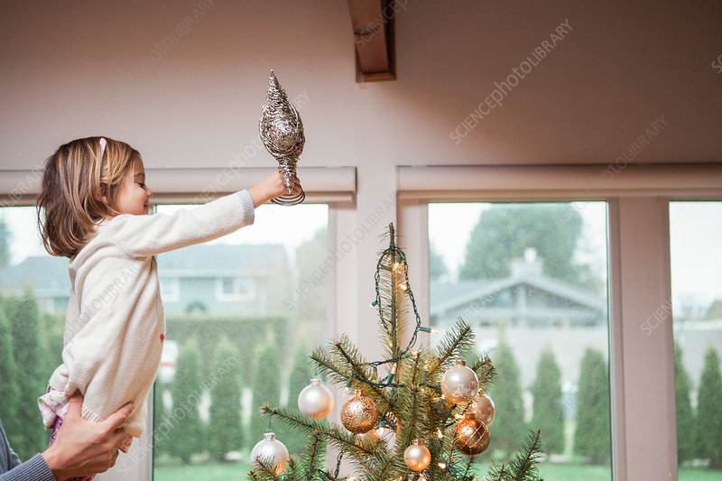 Toddler putting star on Christmas tree