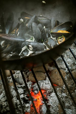 Black Mussels over a charcoal barbecue