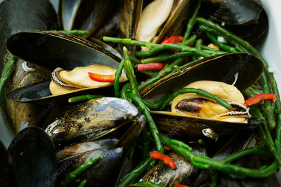 Steamed Black Mussels with samphire