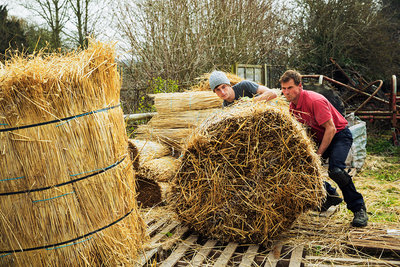 Two thatchers moving bundles of straw