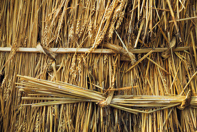Close up of straw laid on a roof