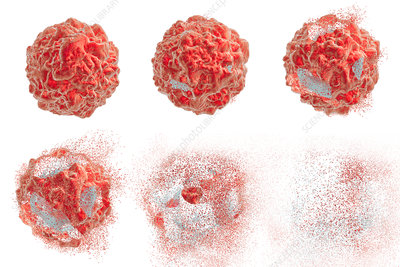 Destruction of a cancer cell, illustration