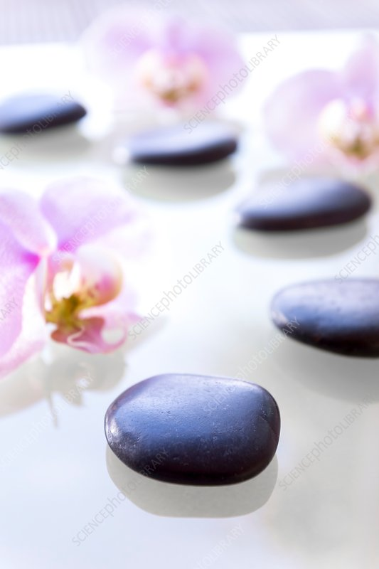 Therapeutic stones and orchids