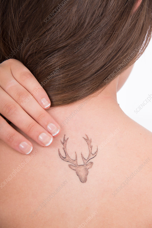 Young woman with tattoo of stag on back