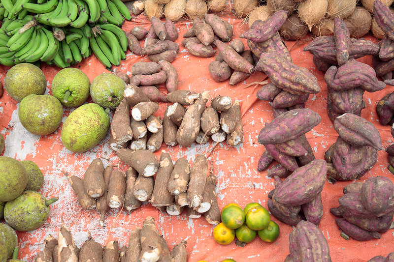 Taro, breadfruit and sweet potato in market