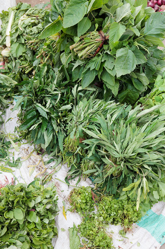 Mixed green vegetables and herbs in market