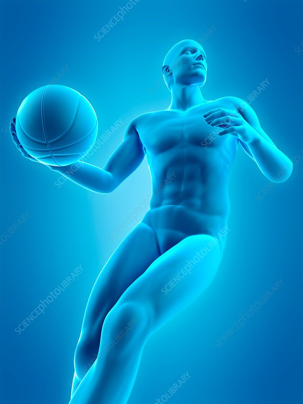 Basketball player, illustration