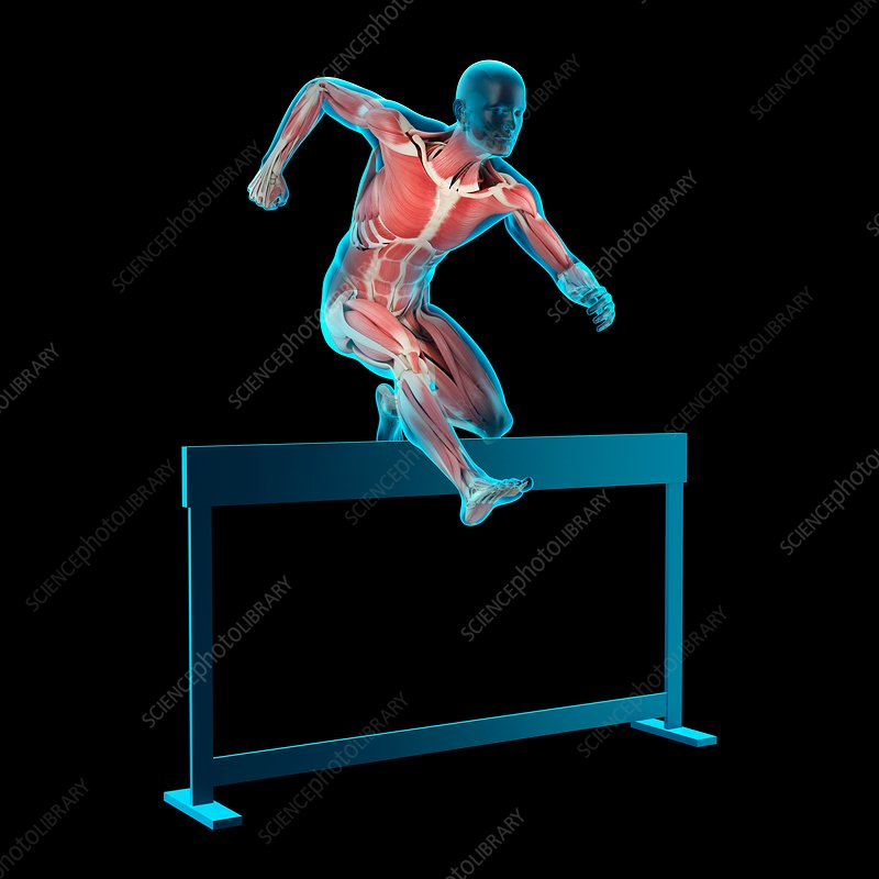 Athlete hurdling over hurdle, illustration
