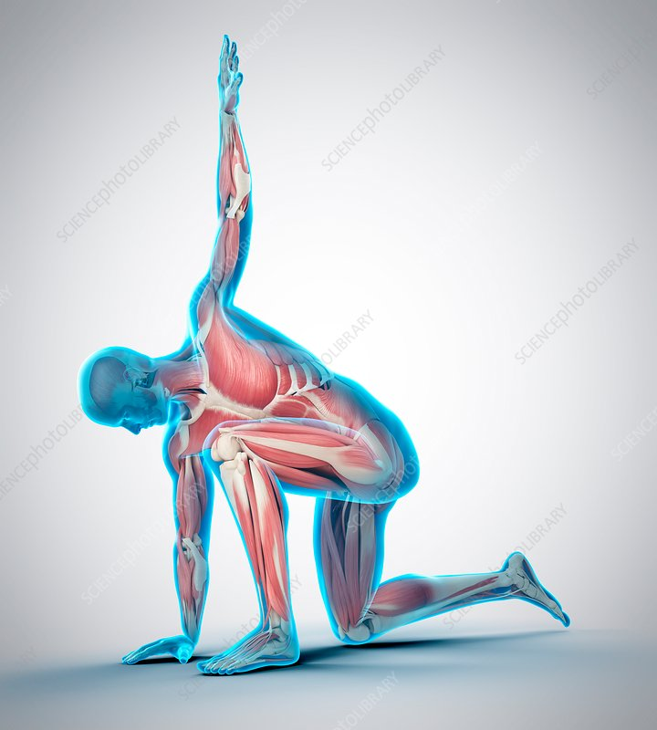 Person kneeling with arm raised, illustration