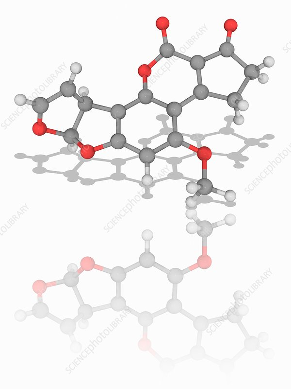 Aflatoxin B1 organic compound molecule