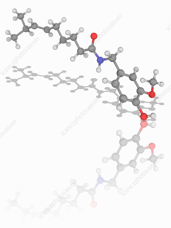 Capsaicin organic compound molecule