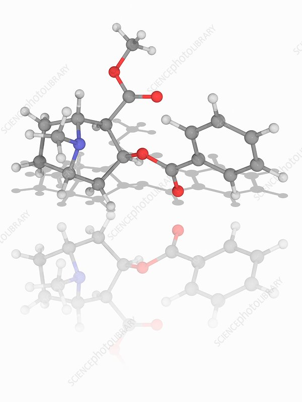 Cocaine drug molecule