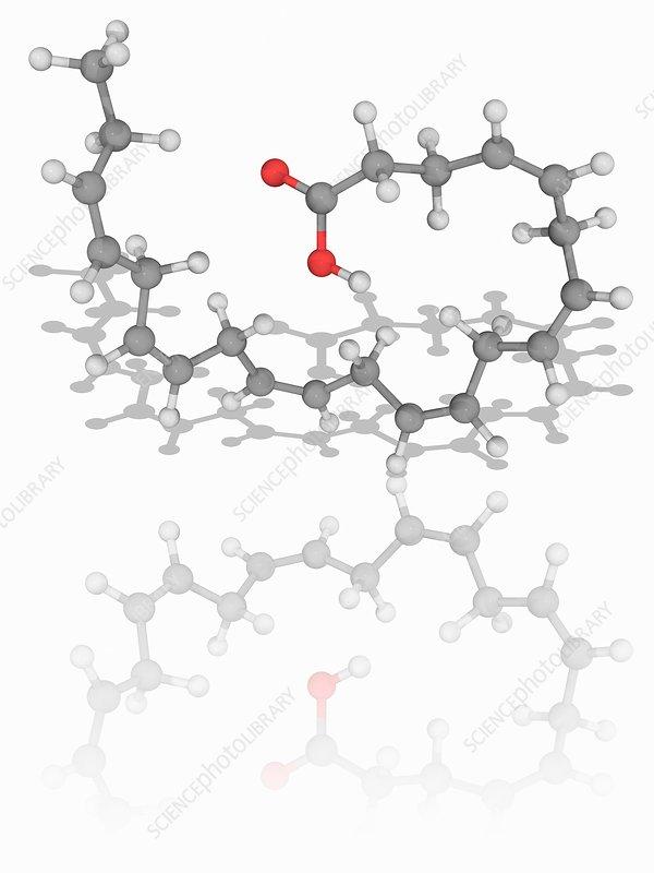 Docosahexaenoic acid organic compound molecule