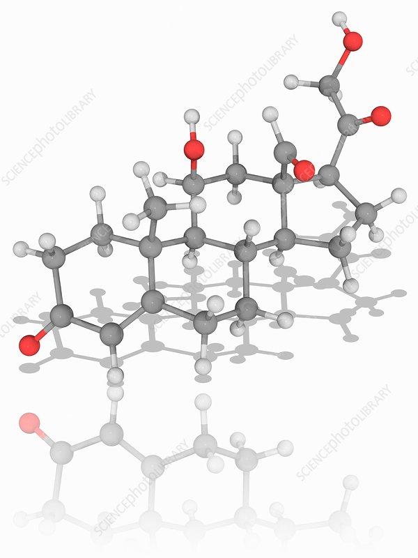 Hydrocortisone (cortisol) hormone molecule