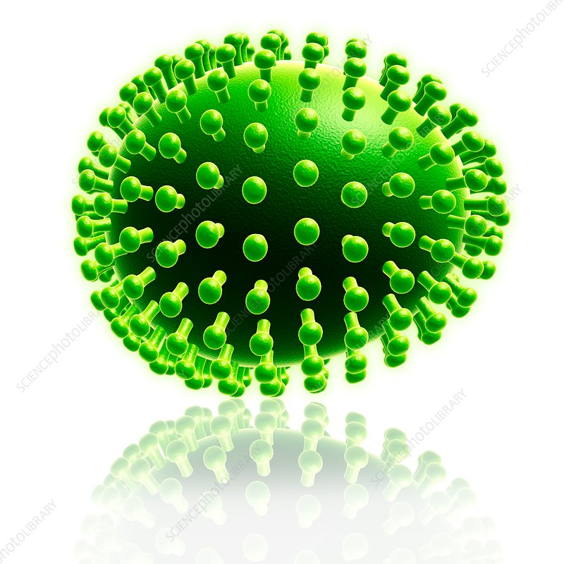 Virus particle, illustration