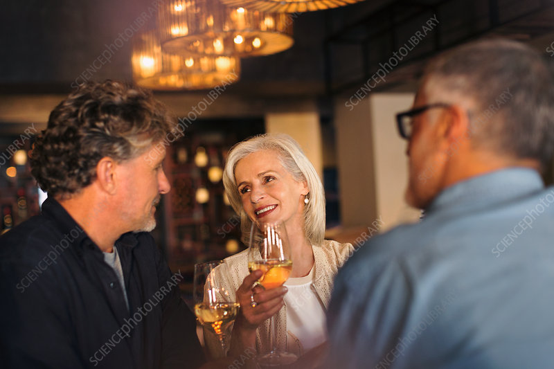 Friends talking and drinking white wine in bar