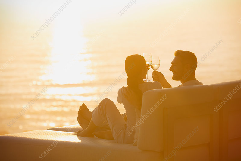Silhouette couple toasting wine glasses