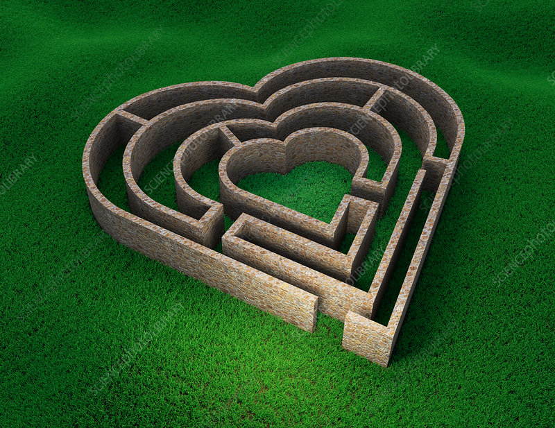 Heart shaped maze