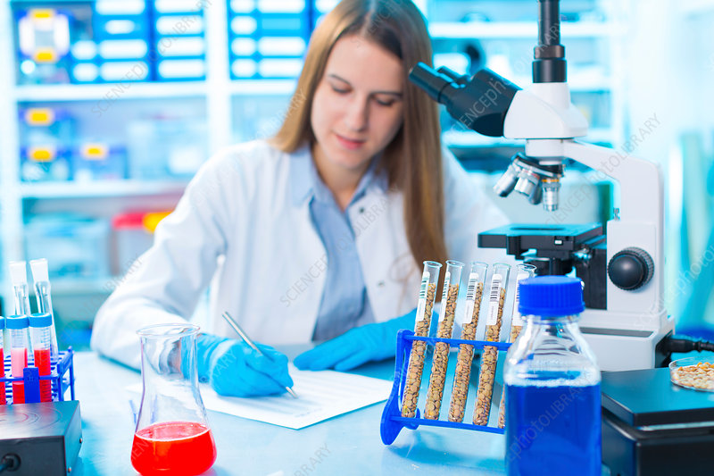 Young woman in food quality control laboratory