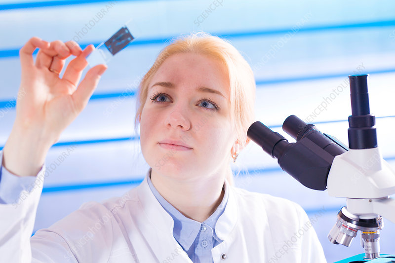 Young woman holding microscope slide