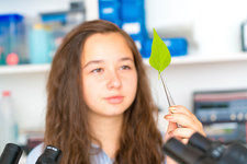 Girl holding green leaf with tweezers