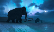 Artwork of the Mammoths and Aurora