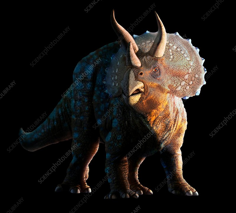 Artwork of a triceratops