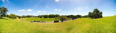 Grassy hills, Auckland, New Zealand