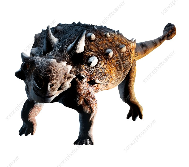 Artwork of Euoplocephalus dinosaur