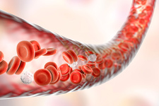 Blood vessel with blood cells, illustration