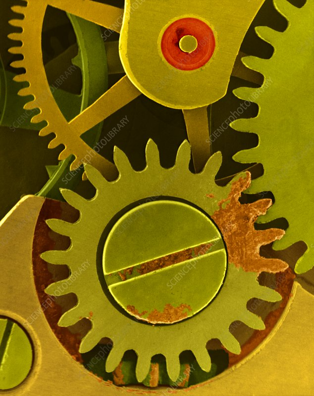 Watch cogs and gears, SEM