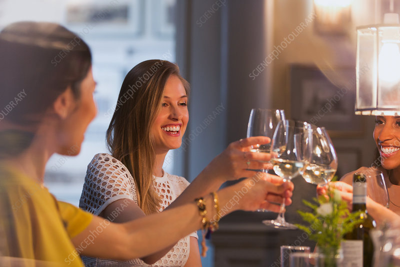 Smiling women friends toasting wine glasses dining