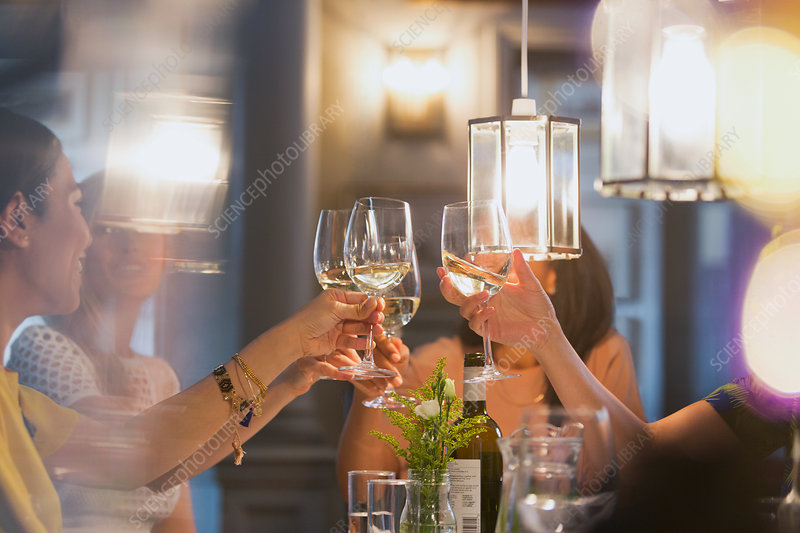 Women friends toasting white wine glasses dining