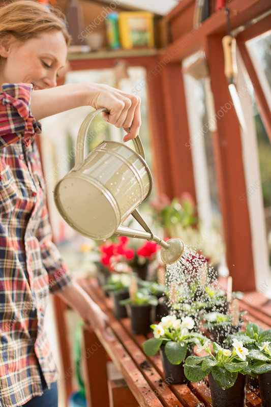 Woman watering potted plants