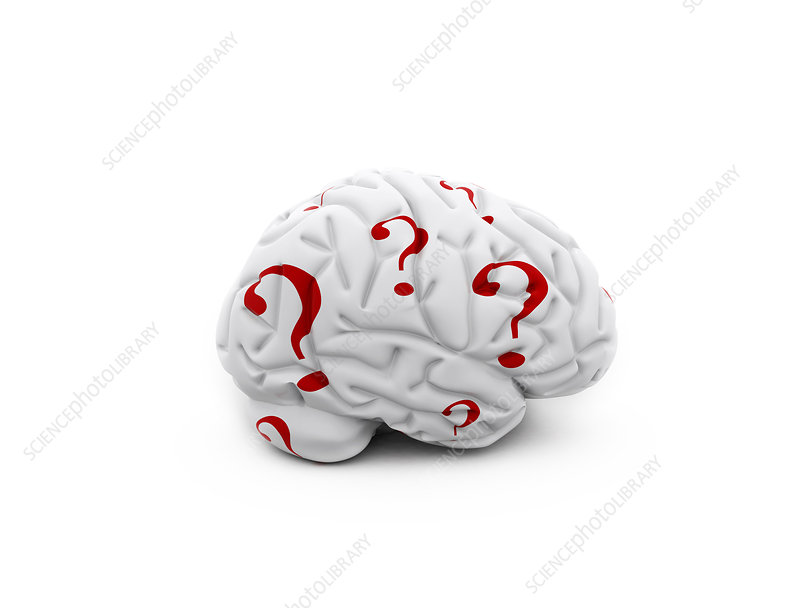 Human brain with question marks